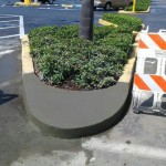 Concrete Repair, Tampa Curb Photo - Asphalt and Concrete Parking Lot Maintenance (ACPLM)