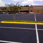 Asphalt Sealcoating, Tampa, FL Large Parking Lot Photo - Asphalt and Concrete Parking Lot Maintenance (ACPLM)