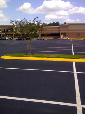 ACPLM Parking Lot Paving Tampa