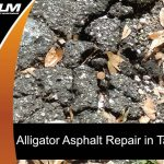 alligator-asphalt-repair-in-tampa
